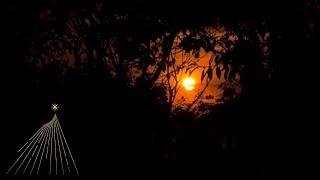 El Sagrado Llamado (SOLO APARICION) - 18/08/2017 (EN VIVO)