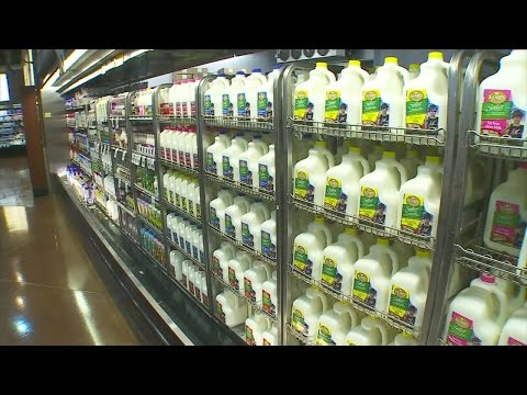 Good Question: How Do The 4 Types Of Milk Differ From One Another?