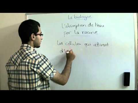 La Biologie - Chapitre 1 - l'absorption de l'eau par les poils de la racine - Abdallah Reda el Sayed