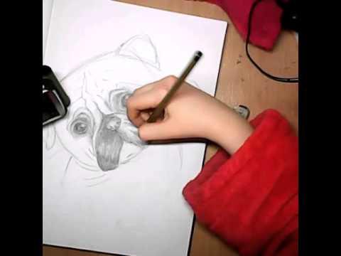 Рисую мопса простым карандашом