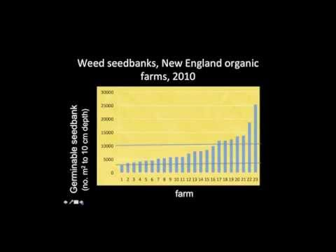 Mental Models: How Northern New England Organic Farmers Think about Weeds and Weed Management