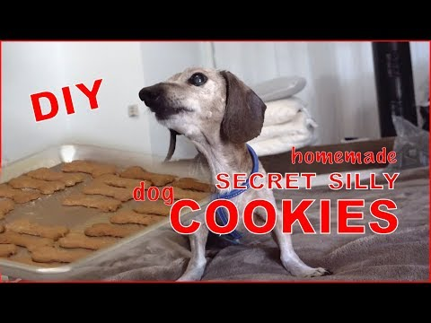 diy-dog-treats---healthy-all-natural-homemade-dog-cookies