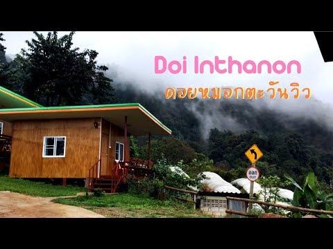 ดอยอินทนนท์หนาวแล้ว หมอกลง วันฝนตก  ที่พักดอยหมอกตะวันวิว บ้านขุนวาง Doi Inthanon / Chiang Mai