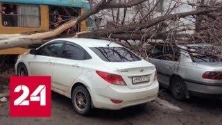 """""""Погода 24"""": на Россию обрушился ураган """"Эберхард"""" - Россия 24"""