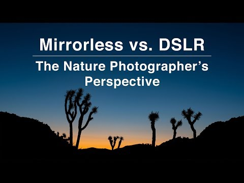 Mirrorless vs DSLR Cameras for Nature Photos | Outdoor Photography Tips
