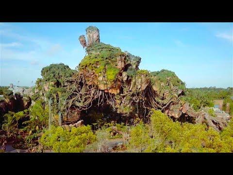 Dazzling drone flight over Pandora - The World of Avatar at Walt Disney World