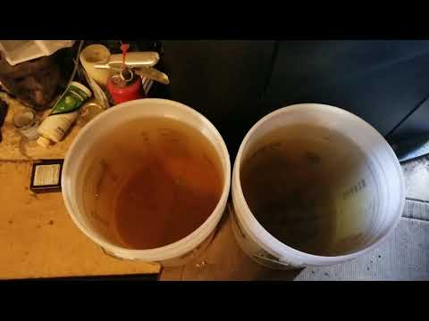 Removing Ich , And Cotton Mouth From Your Tank , Part 2