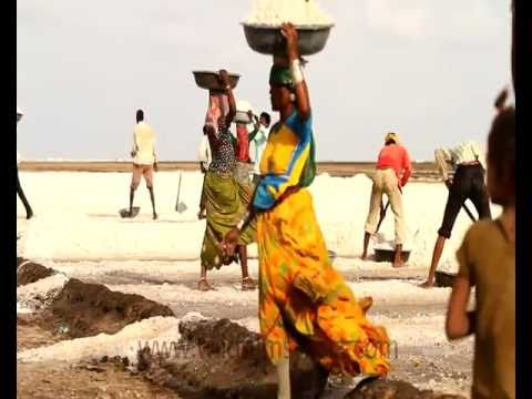 Salt workers in Rann of Kutch, Gujrat