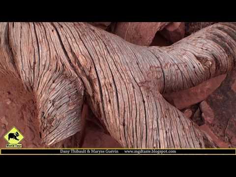 Voyage Etats Unis/ Canyonlands National Park Utah | Maryse & Dany