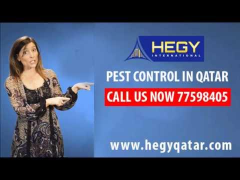 Pest Control Service Company in Doha,Qatar