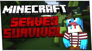Servidor de Minecraft Survival 1.10 / 1.9 Pirata e Original