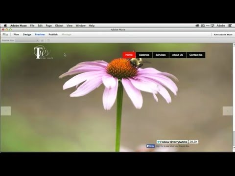 How To Get Started With Adobe Muse CC - 10 Things Beginners Want To Know How To Do