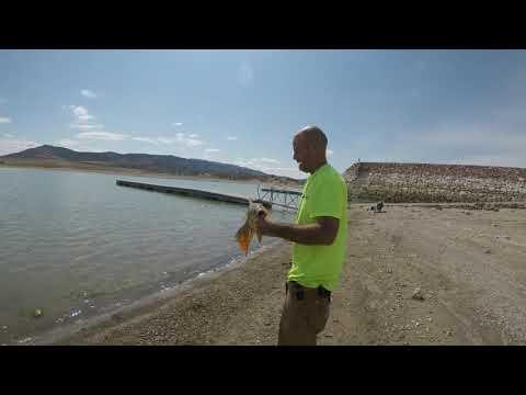 Fishing Yuba Lake In Utah.