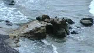 Рыбаковка Rybakovka(Презентационный фильм о черноморском курорте Рыбаковка (Украина, Николаевская область), 2009-09-08T20:59:50.000Z)