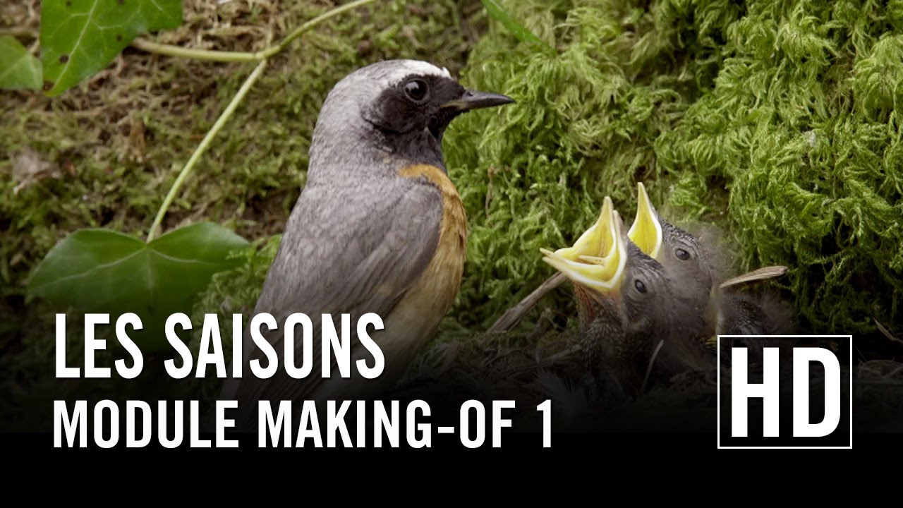 Les Saisons - Module Making-of 1