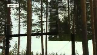 Отель на деревьях в Швеции (на англ. языке)