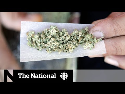Ottawa moves for fast, free pot pardons for Canadians