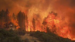 Kalifornien: Waldbrände außer Kontrolle