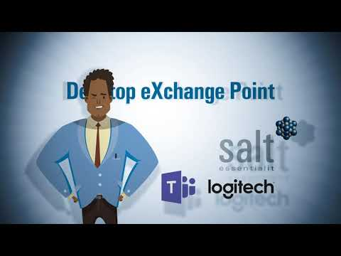 Salt's Desktop eXchange Point: an out-of-this-world teamwork experience
