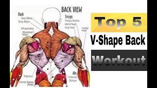 Top 5 V-Shape Back Workout   Rubal Dhankar  