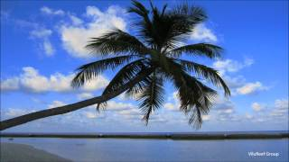 8 hours Nature Sounds List/8時間版まとめ http://youtu.be/torI6UihsC...