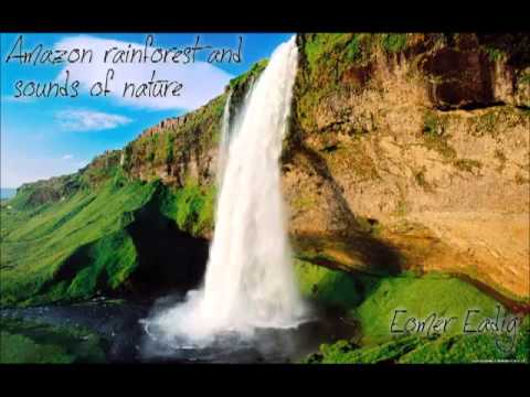 Relaxation and meditation - Amazon rainforest and sounds of nature