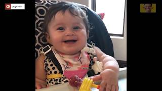 Funny Twins Baby Playing Together -  Twin Babies Cutest Moments -  Youtube