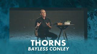 Thorns   Bayless Conley