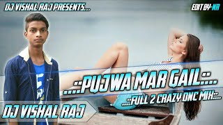 Pujawa Mar Gail / Full 2 Crazy Dnc Mix