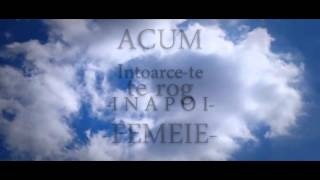 DMC - Nu ai idee (Lyrics VIDEO)