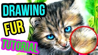 HOW TO DRAW REALISTIC FUR! Coloured Pencil Drawing Tutorial   Step by Step