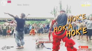 Download Lagu CAH EDAN LOSS // BANTENGAN GALAK MAYANGKORO ORIGINAL Goa Selomangleng mp3