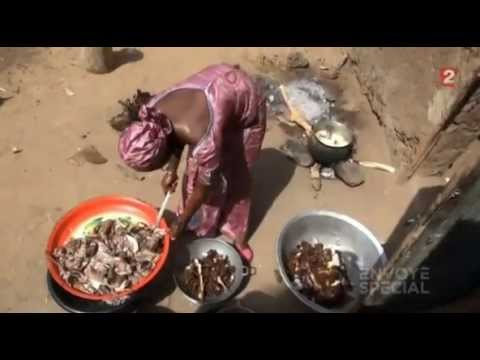 Mali - Au nom de la charia
