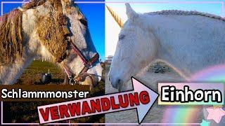 Vom SchlammMonster zum EINHORN ✮ VERWANDLUNG ♥ Anita Girlietainment Pferd