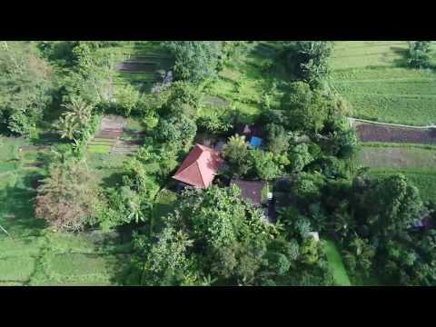 Side By Side Organic Farm & Homestay, Bali