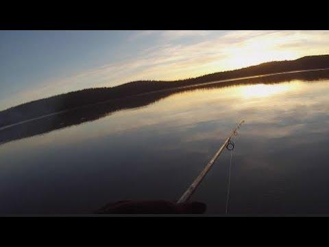 Tooms Lake Camping And Trout Fishing Tasmania