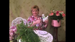видео полезные продукты питания — ТутВкусно! ru