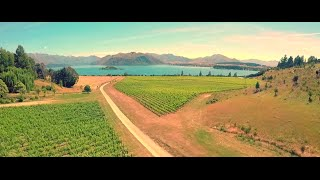 Highlights from Jane and Simon's Wanaka Wedding Film with Aerial Filming