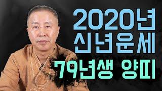 ◆ 79년생 양띠운세사주 ◆ 2020년도 양띠운세사주 신점