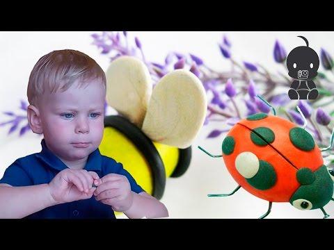 ЛЕПКА ДЛЯ ДЕТЕЙ. Лепка из пластилина для детей. Лепим пчелку и божью коровку