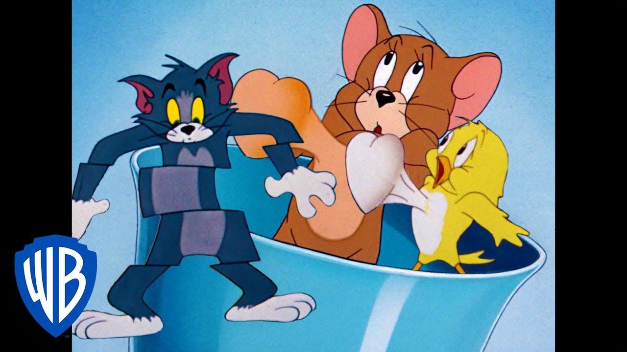 Tom y Jerry en Latino | Aquí Vienen las Aves | WB Kids