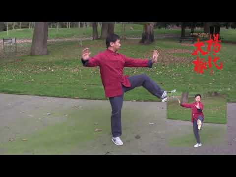 Yang Family Tai Chi Essential Form Performed by Master Yang Jun