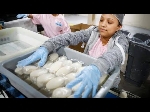 Download Unilever Factory Visit   How to make LUX, Surf Excel, Dove Soap & others