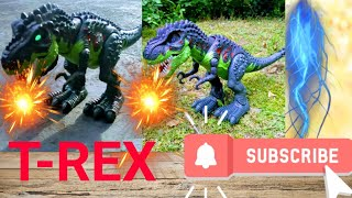 Pretend Play funny!Fighting with Dinosaur ! We Killed  The Big T-REX!