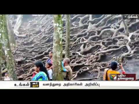 Guna Caves in Kodaikanal to be open for tourists after 10 years