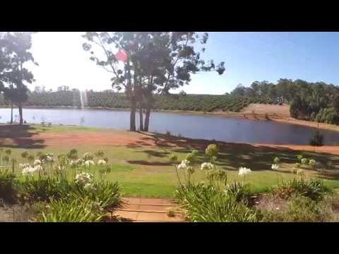 Avocado farm Western Australia