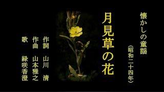 芹洋子 - 月見草の花