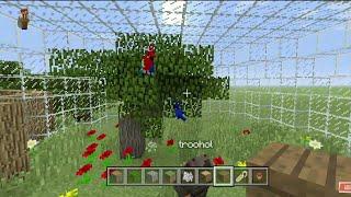 Minecraft construction d'un ZOO [EPISODE 6] La volière