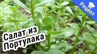 Салат из сорной травы-Портулак!#Рецепт#