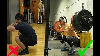 How LOW Should YOU Squat? (Squat Depth & Butt Wink)